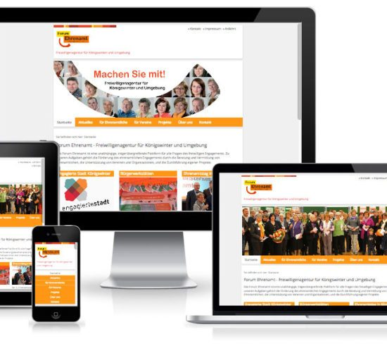 Forum Ehrenamt - TYPO3 Website